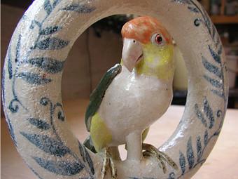 Parrot07