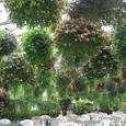 園内の風景
