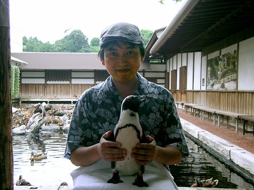 ペンギンを抱っこ2