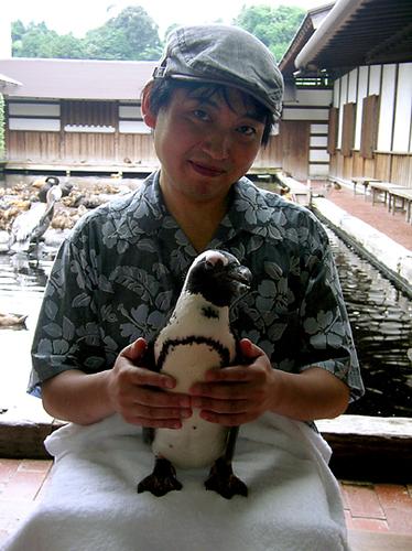ペンギンを抱っこ1
