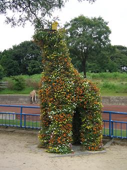 Giraffe02