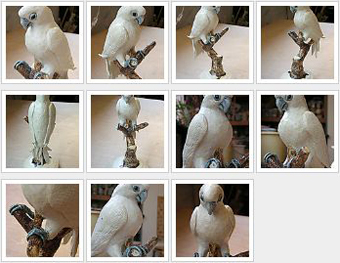Cockatoo_thumbs