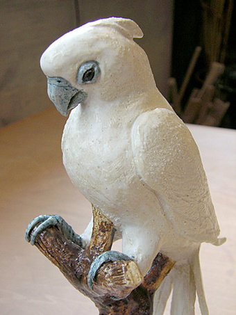 Cockatoo_002