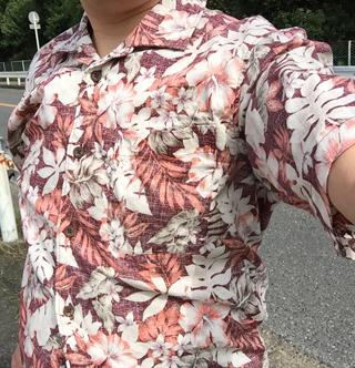 Aroha_150923