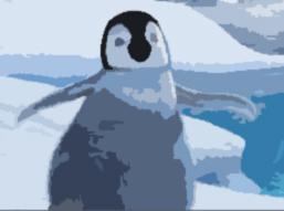 コウテイペンギンの雛誕生